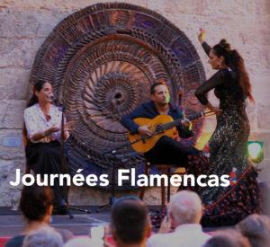 journées flamencas 2